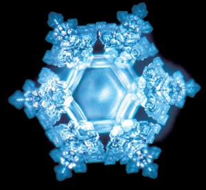 Mararu Emoto's images of the power of word frequency on water molecules
